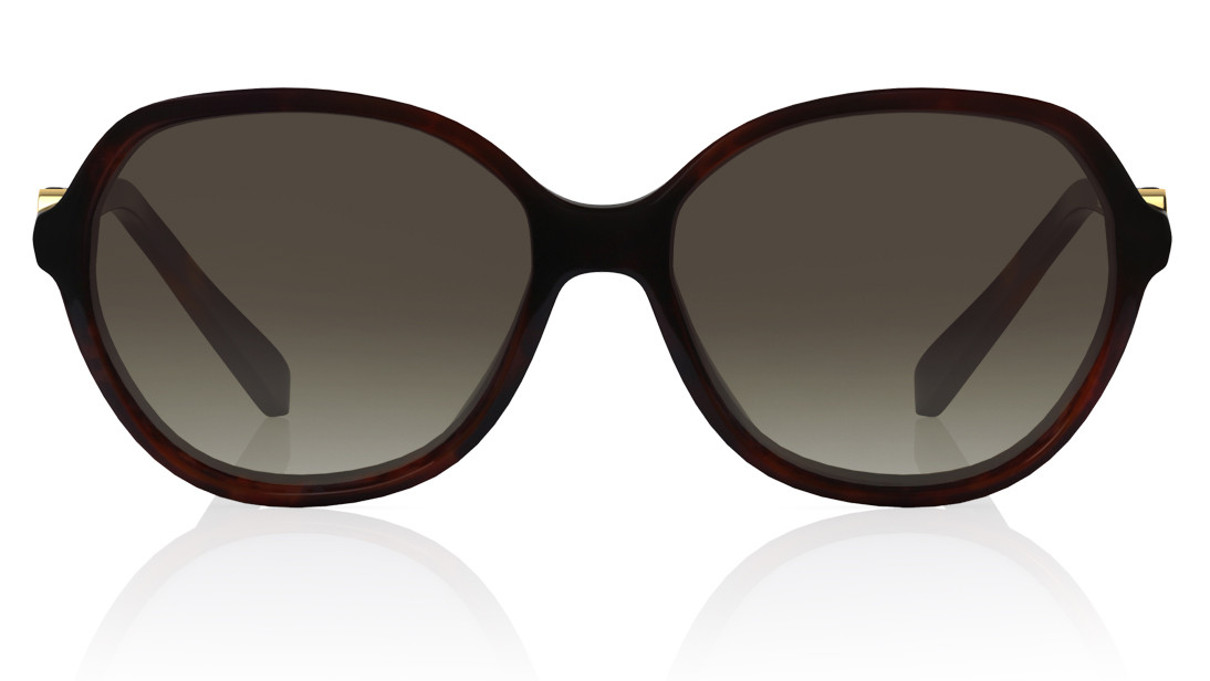 Brown Round Titan Women Sunglasses