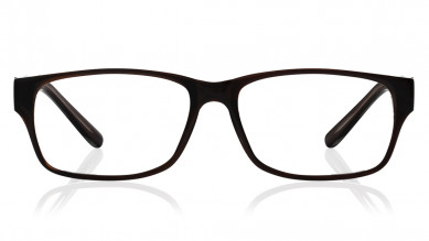 Dark brown Rectangle Rimmed  Eyeglasses from Titan