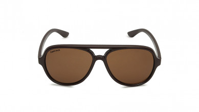 Brown  Aviator Pilots  Fastrack Men Sunglasses